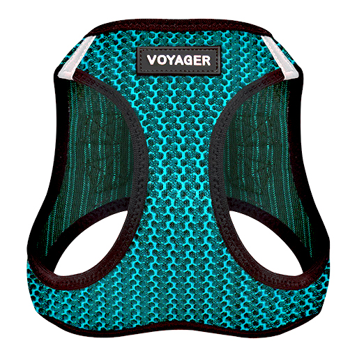 Voyager Harness Front View